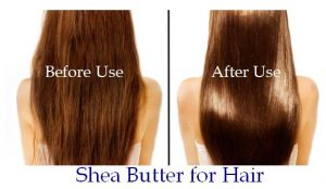 shea-butter-for-hair-2