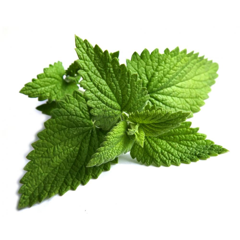 peppermint-source-image